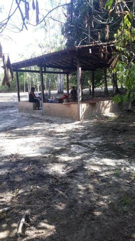 Sítio Santo Antônio do Tauá med.: 180 x 800 só R$ 150 mil - Foto 16