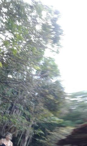 Sítio Santo Antônio do Tauá med.: 180 x 800 só R$ 150 mil - Foto 7