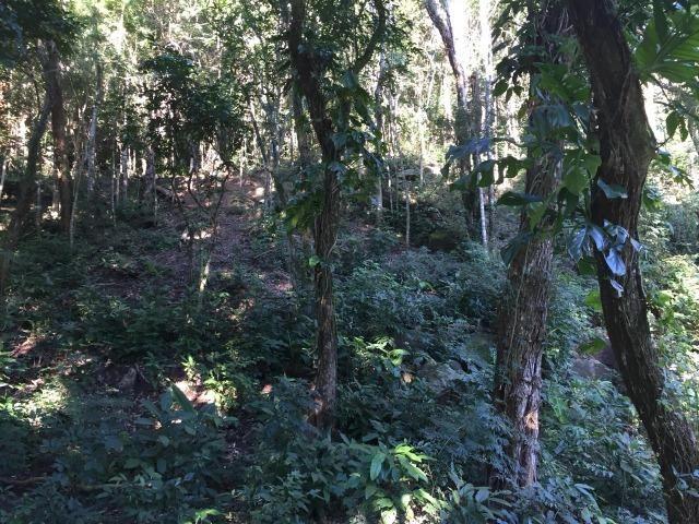 Bon: 2269 Serra do Mato Grosso - Saquarema - Foto 8