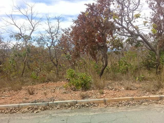 Vendo lote 1.000 metros plano Baldim bairro Santa Luzia - Foto 9