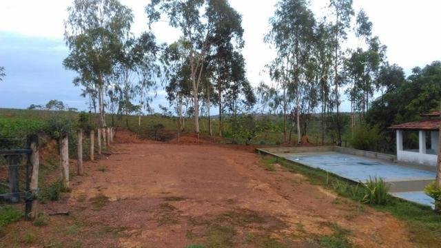 Vende-se Sítio no município de Lagamar 56 Hectares - Foto 7