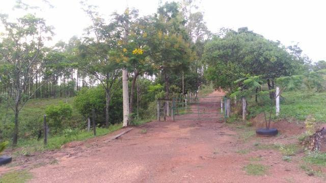 Vende-se Sítio no município de Lagamar 56 Hectares - Foto 9