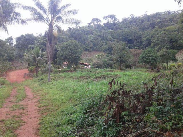 Sítio à venda com 3 dormitórios em Zona rural, Piranga cod:13135 - Foto 14