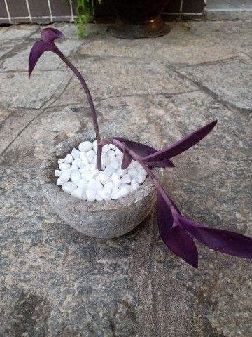 Plantas com jarro feito a mão - Foto 2