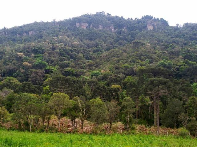 Exuberante Montanha com Rio - Foto 6