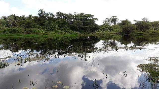 Fazenda em Iaçu-Ba - Foto 8