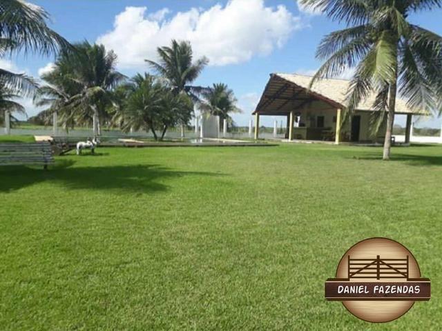 Fazenda com 480 hectares a 60 km de natal - Foto 16