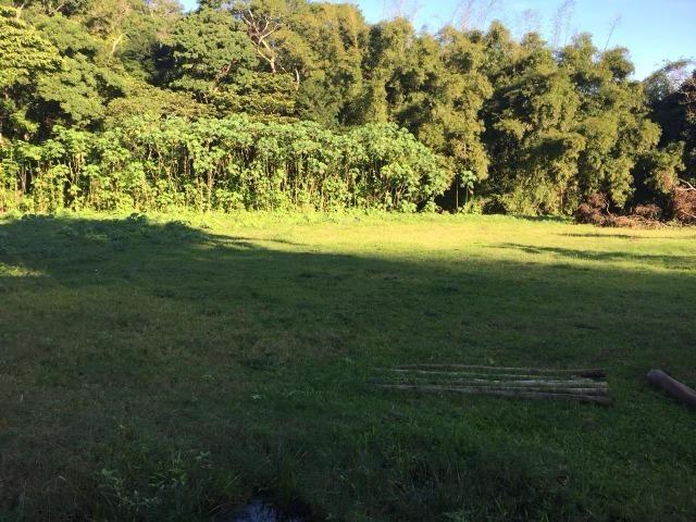 Bon: 2269 Serra do Mato Grosso - Saquarema - Foto 5
