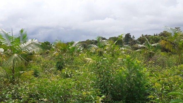 Vendo terreno no porto do céu * - Foto 3