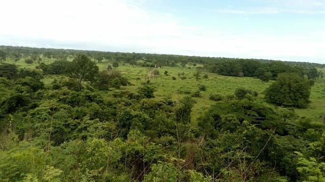Chácara 17 alqueiro Santa Rita do Tocantins