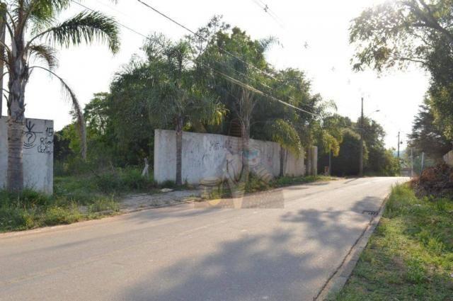 Terreno para alugar, 3100 m² por r$ 3.900/mês - santa felicidade - curitiba/pr