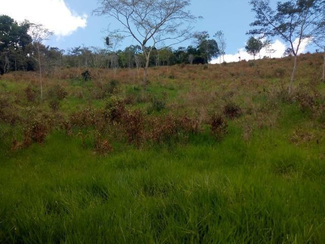 Fazenda em Ubaira-BA - Foto 9