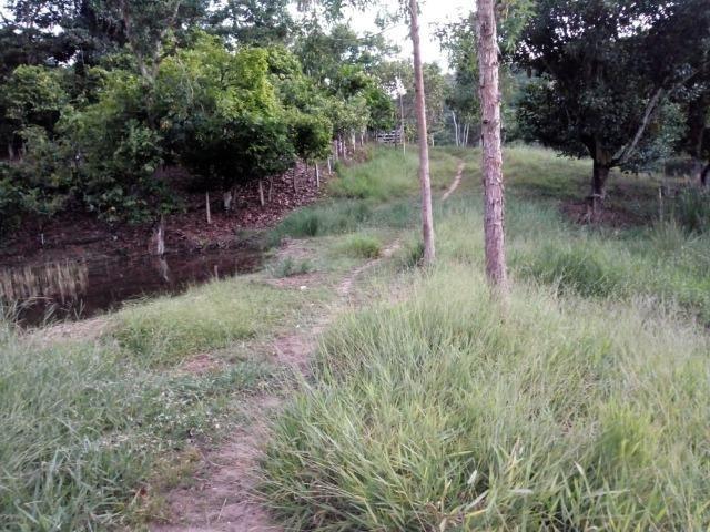 Fazenda em Ubaira-BA - Foto 5