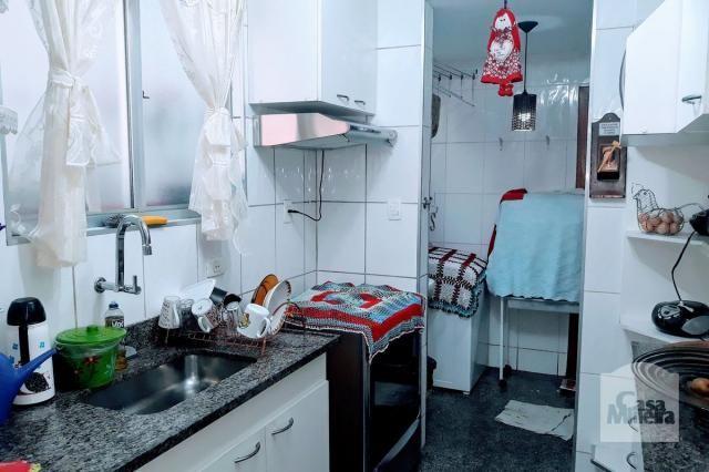 Apartamento à venda com 3 dormitórios em Padre eustáquio, Belo horizonte cod:251011 - Foto 12