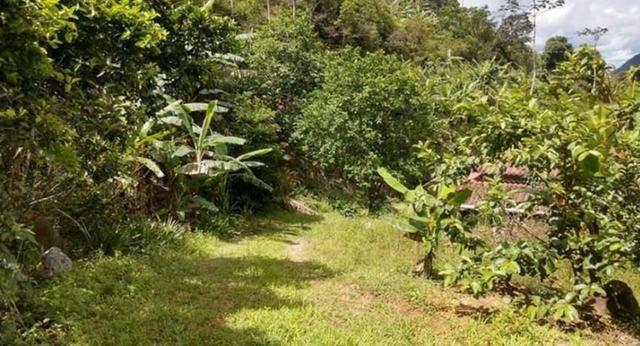 Sitio em Conceição de Macabu - Foto 5