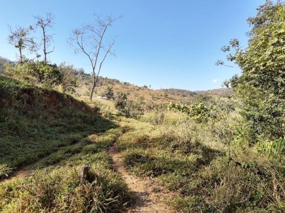 676 - Área de terra no Bugre de 29 hectares - Foto 19
