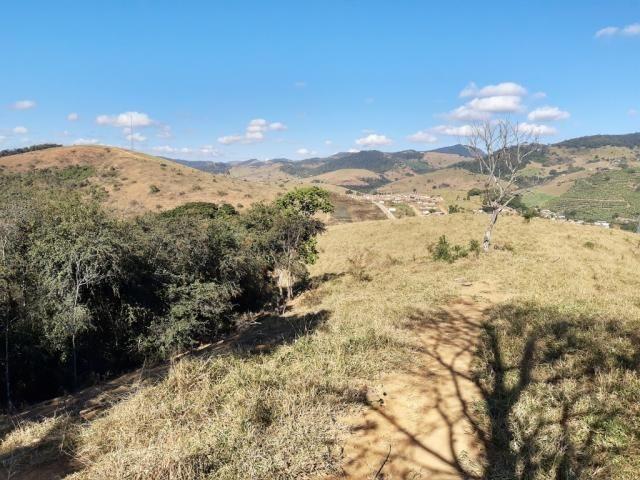 676 - Área de terra no Bugre de 29 hectares - Foto 5
