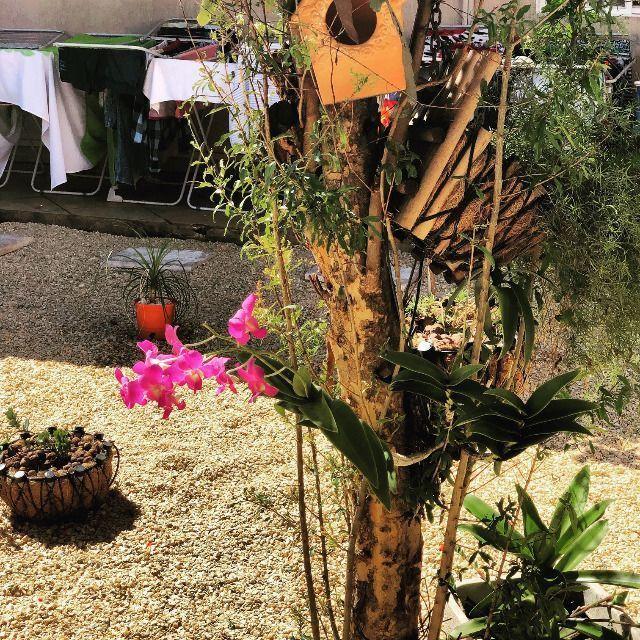 Kitchenette para alugar no Bairro Bueno - Foto 6
