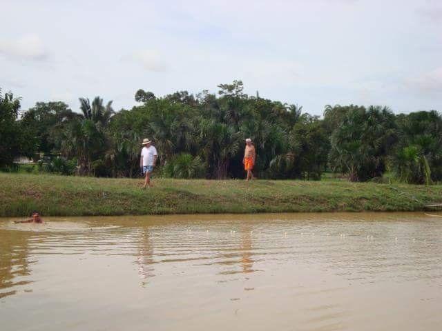 Vendo uma Maravilhosa Chácara Km 14, sentindo Guajará perto do Restaurante Bambu - Foto 8