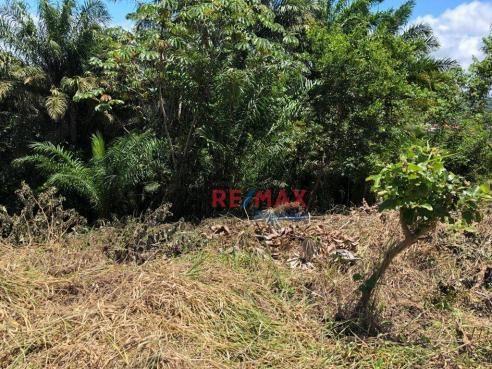 Terreno à venda, 1302 m² por r$ 140.000 - nossa senhora da vitória - ilhéus/ba - Foto 2