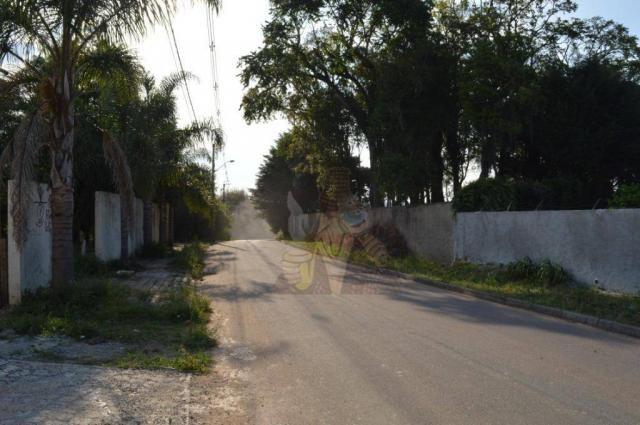 Terreno para alugar, 3100 m² por r$ 3.900/mês - santa felicidade - curitiba/pr - Foto 2