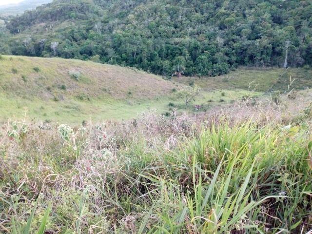 Fazenda em Ubaira-BA - Foto 10