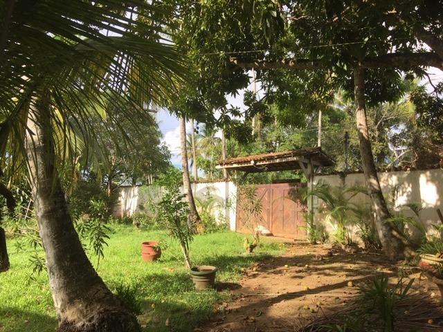 Sitio Cassange com 5132 de área - Foto 3