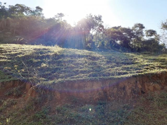 676 - Área de terra no Bugre de 29 hectares - Foto 17