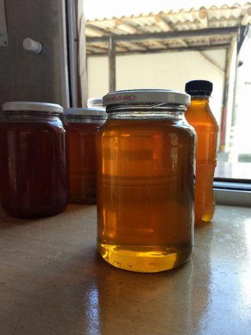 MEL de abelha puro - Foto 2