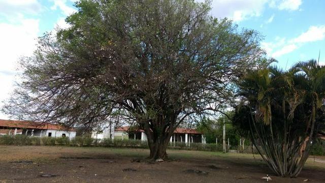 Vendo Fazenda em Missão Velha! - Foto 3