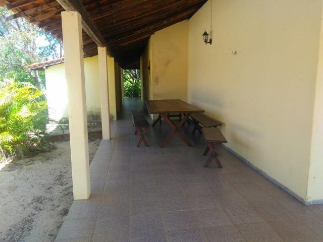 Sitio de 20 hectares, rico em água ótima casa sede e apenas 20 km de Teresina - Foto 11