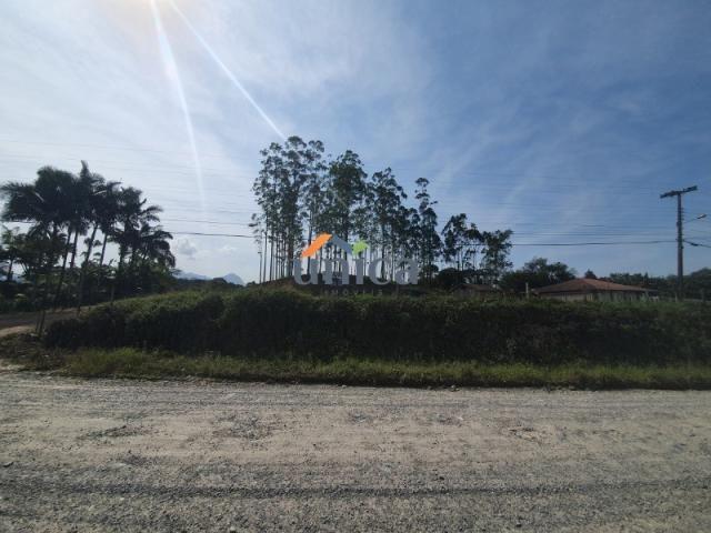 Terreno para alugar em Vila nova, Joinville cod:UN01244 - Foto 7