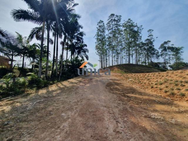 Terreno para alugar em Vila nova, Joinville cod:UN01244