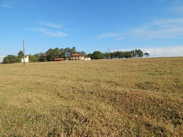 Fazenda de 52 alqueires com represa na divisa (Nogueira Imóveis Rurais) - Foto 12