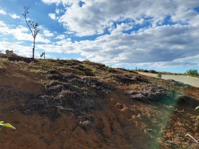 676 - Área de terra no Bugre de 29 hectares - Foto 10