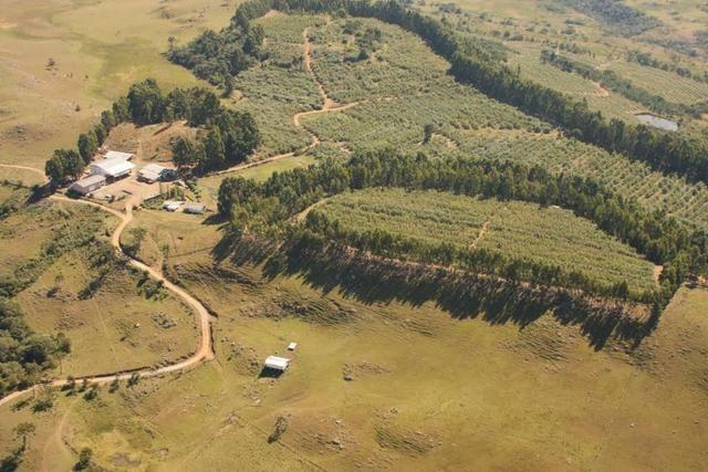 Fazenda em Urubici / chácara área rural - Foto 10