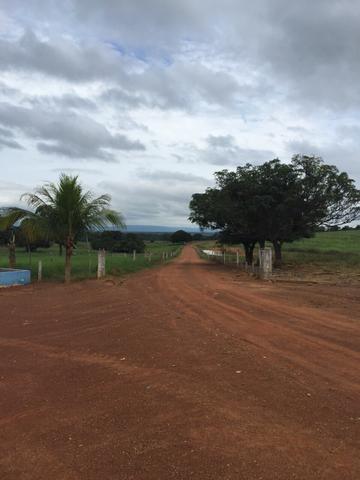 Fazenda 2.686 hectares em ARINOS MG - Foto 7