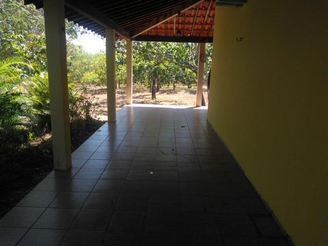 Sitio de 20 hectares, rico em água ótima casa sede e apenas 20 km de Teresina - Foto 14