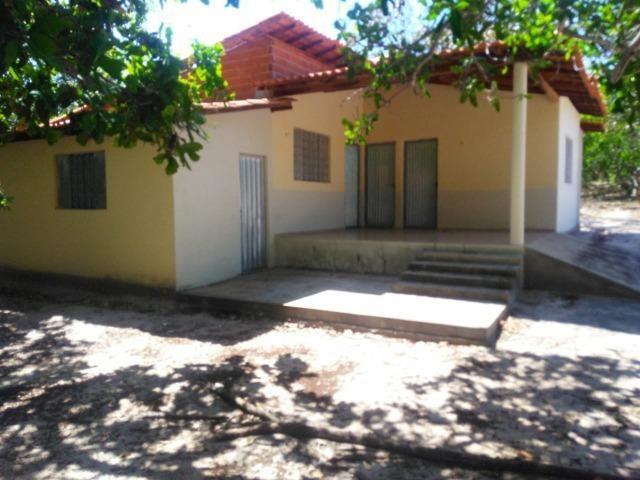 Sitio de 20 hectares, rico em água ótima casa sede e apenas 20 km de Teresina - Foto 10