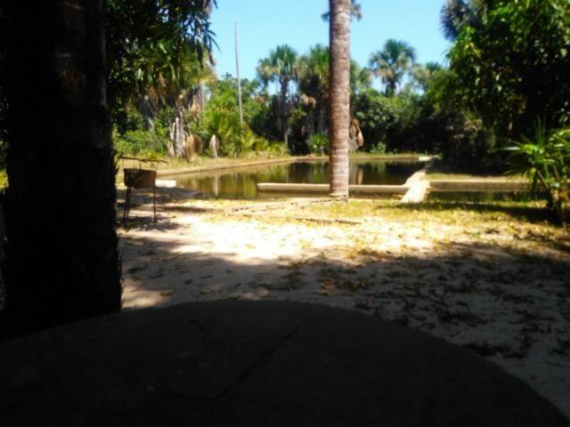 Sitio de 20 hectares, rico em água ótima casa sede e apenas 20 km de Teresina - Foto 4