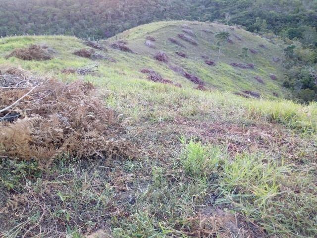 Fazenda em Ubaira-BA - Foto 13