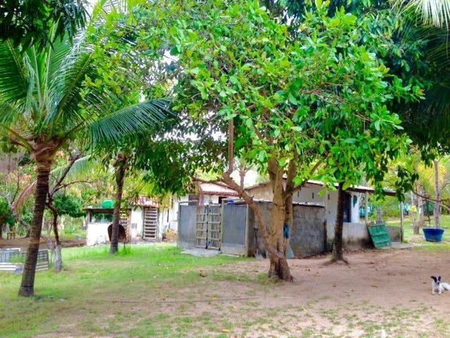 Sitio Coqueiros de Arembepe 20.400 m2 | com piscina - Foto 13