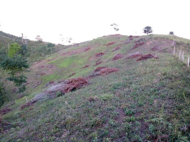 Fazenda em Ubaira-BA - Foto 7