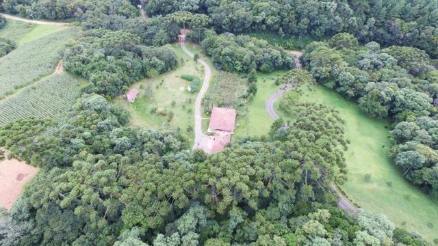 Chácara em Campo Largo Divisa com Curitiba (Oportunidade) - Foto 6