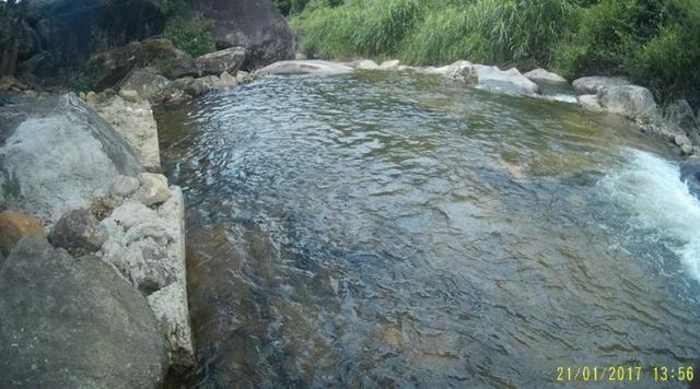 Sitio em Conceição de Macabu - Foto 6
