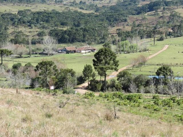 Fazenda em Urubici / chácara área rural - Foto 13