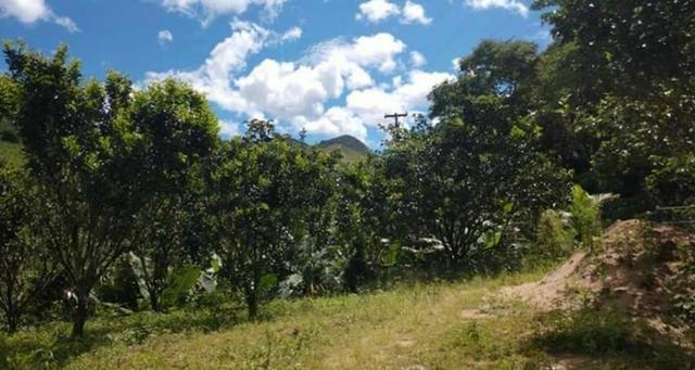 Sitio em Conceição de Macabu - Foto 3