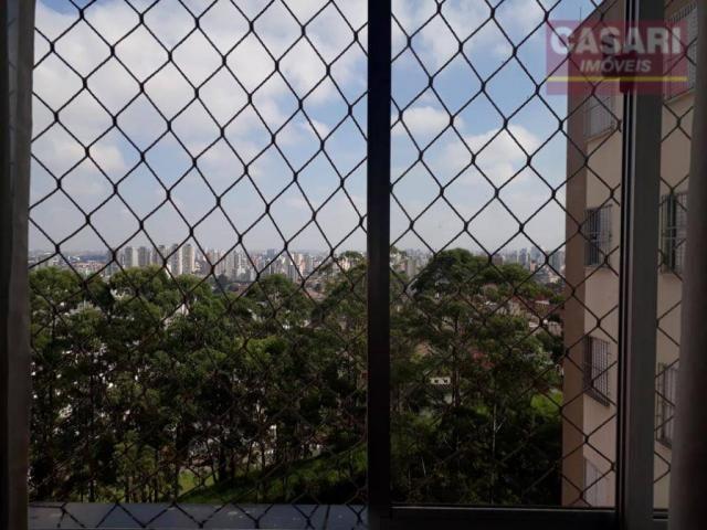 Apartamento com 2 dormitórios à venda, 55 m² - jardim irajá - são bernardo do campo/sp - Foto 8
