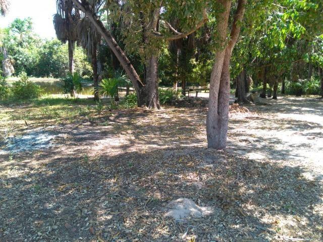 Sitio de 20 hectares, rico em água ótima casa sede e apenas 20 km de Teresina - Foto 12