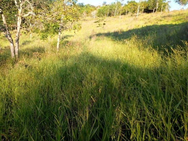 Fazenda em Ubaira-BA - Foto 12